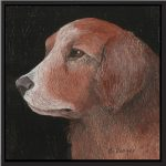 Red Dog - Anna Bellenger