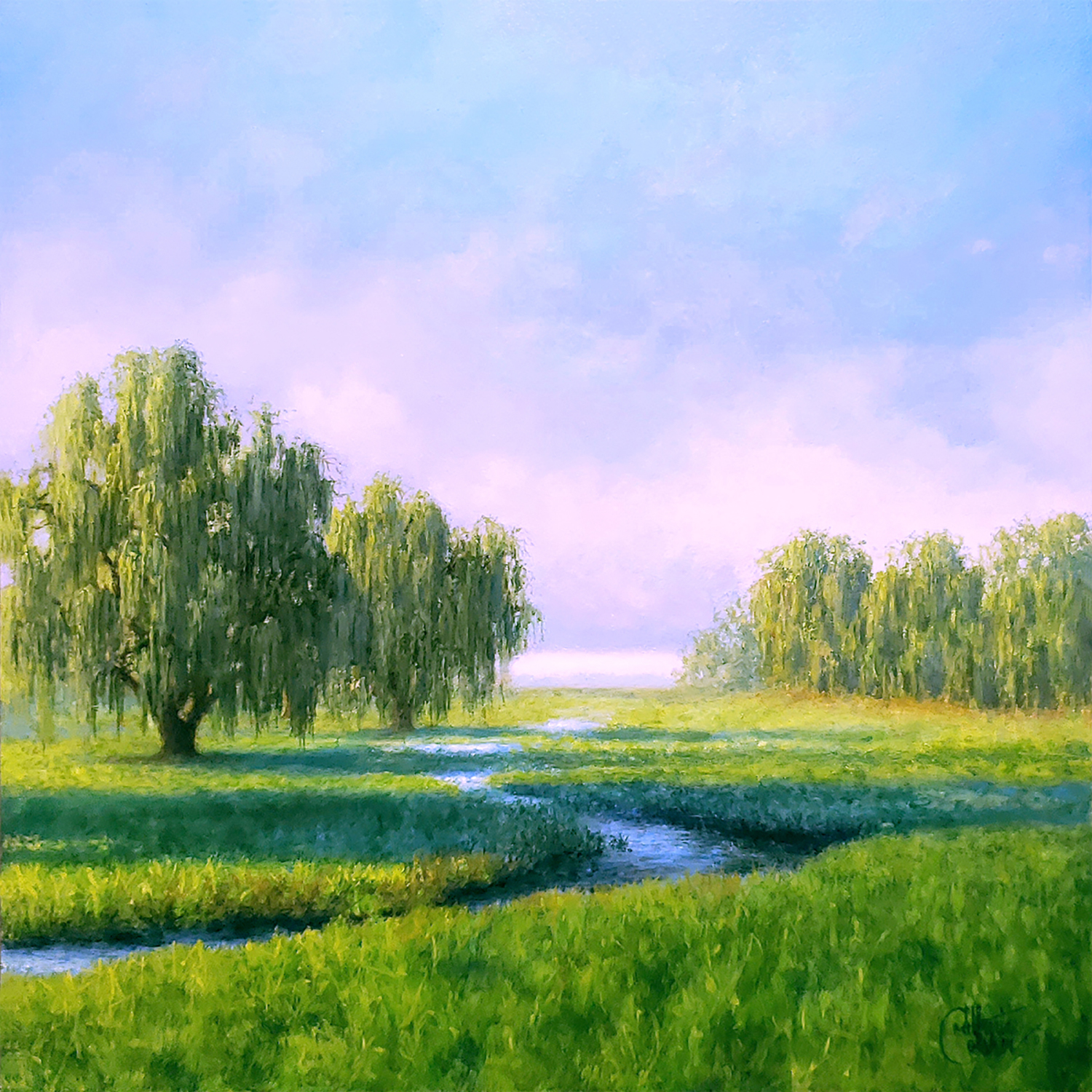 Morning Willows - Catherine Colsher