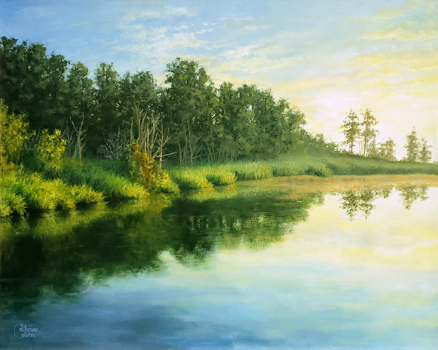 Tranquil Cove - Catherine Colsher