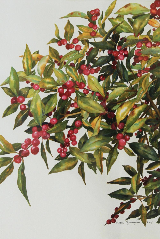 Red Garden - Helen Springer