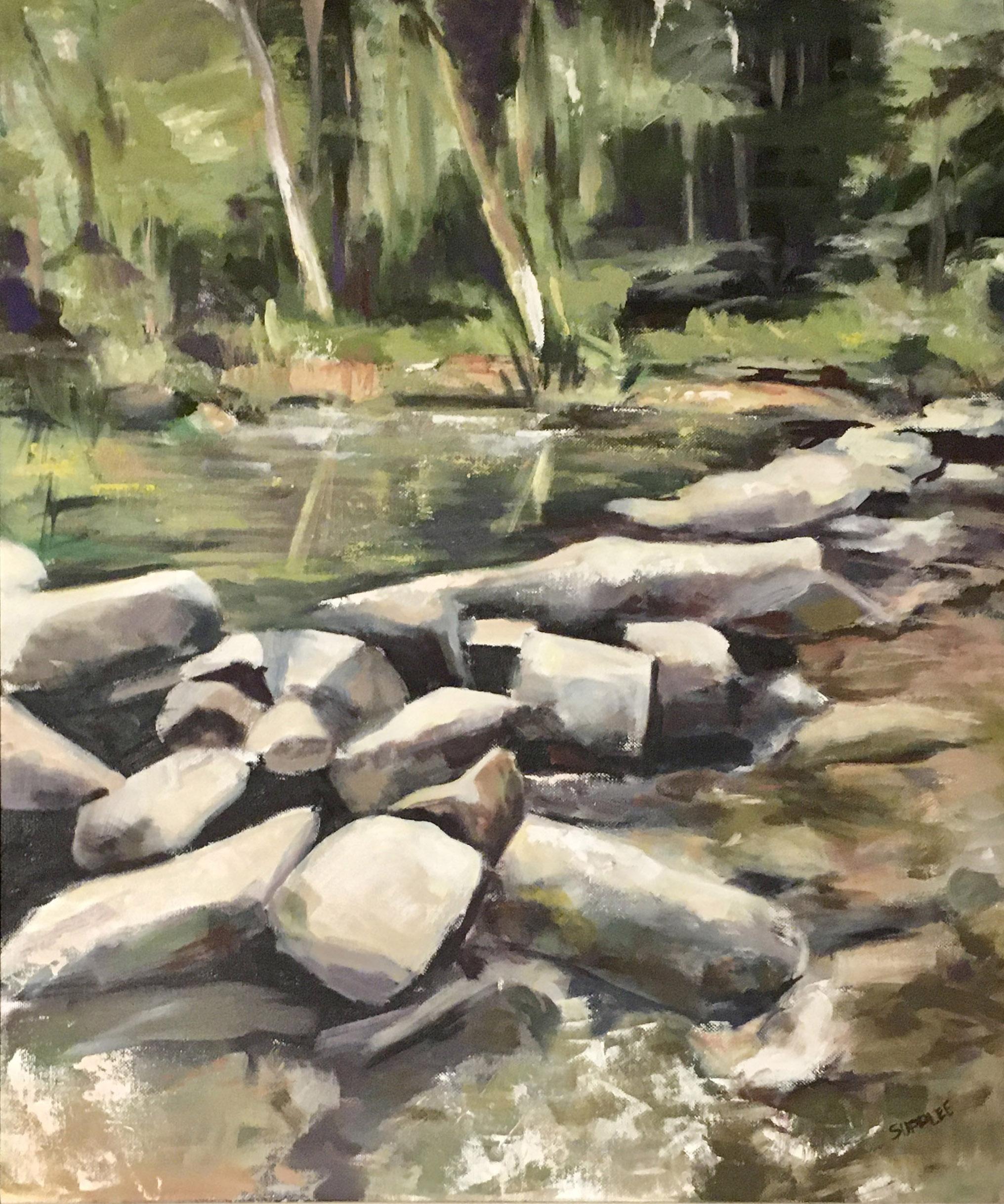 Lots of Rocks - Joan Delaney Supplee
