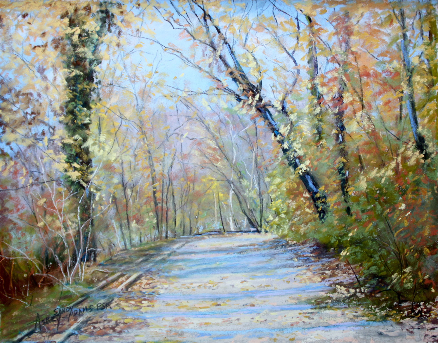 Sunlit Autumn Day in Delaware - Sandy Askey-Adams