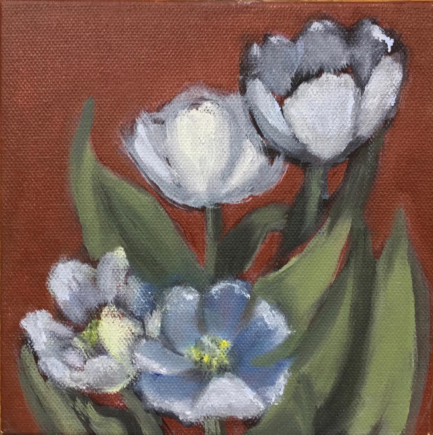Tulip Study No. 1 - Dolores Bartholomew