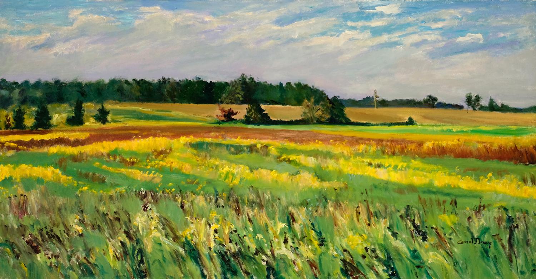 Soybean Fields - Carol Gray