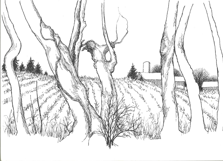 Through the Trees - E Jean Lanyon