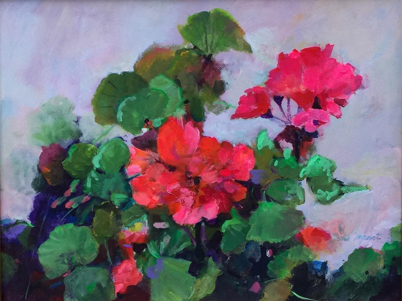 Geraniums - Shah Morovati