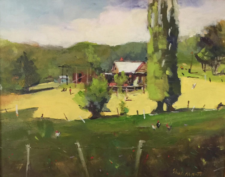 Sunlit Meadow - Shah Morovati