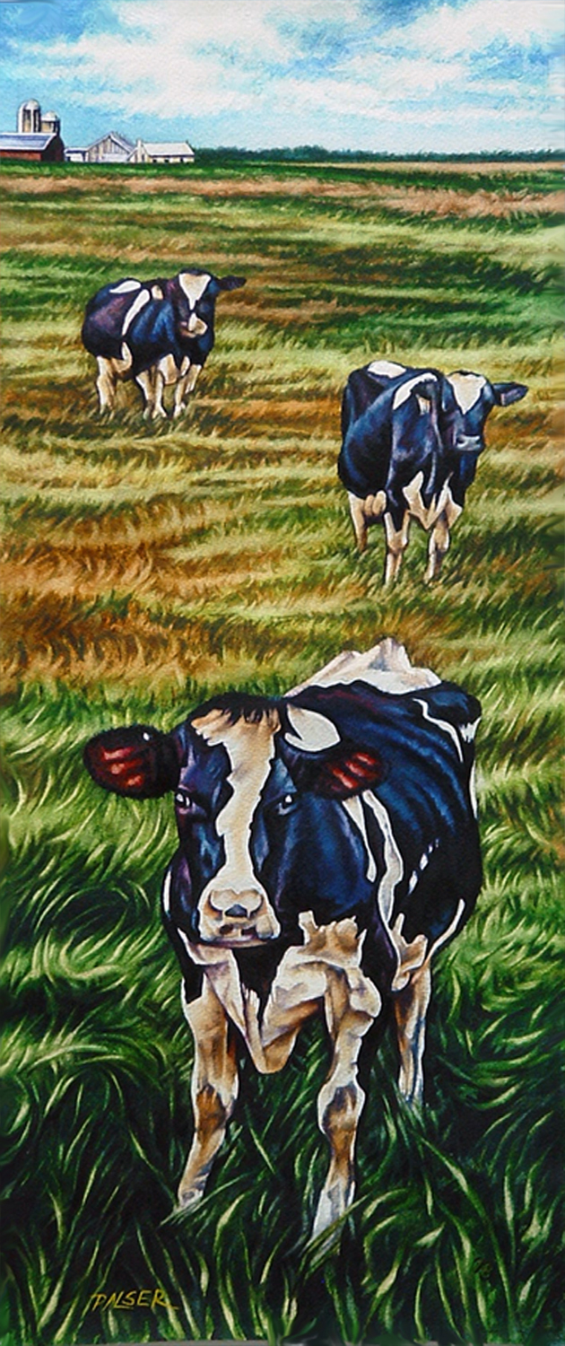 Cows Coming to say Hello - Beth Palser