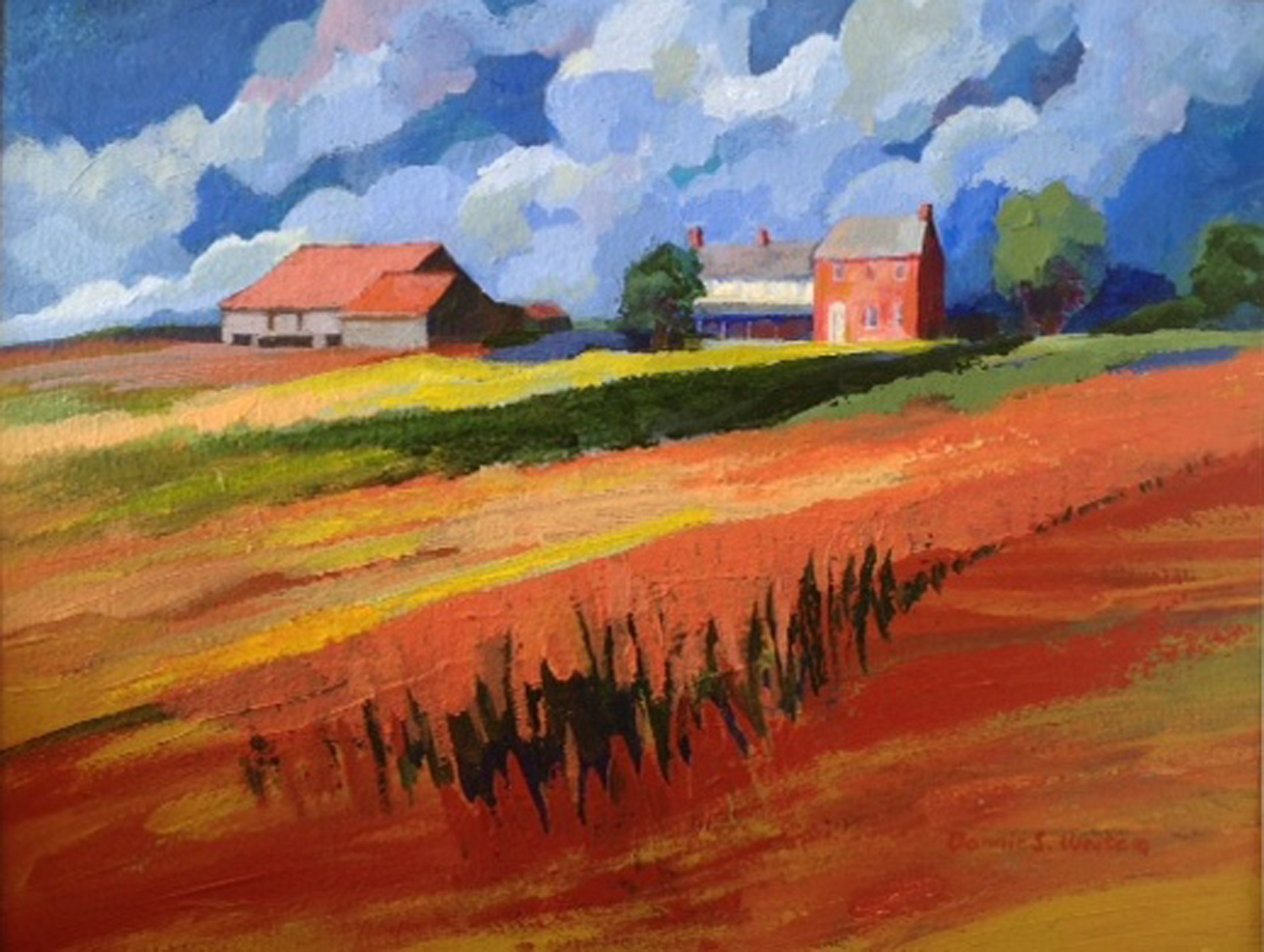 Penn Farm - Orange Fields - Bonnie White